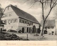01-postkarte-hirsch-ende-19jh-web_240